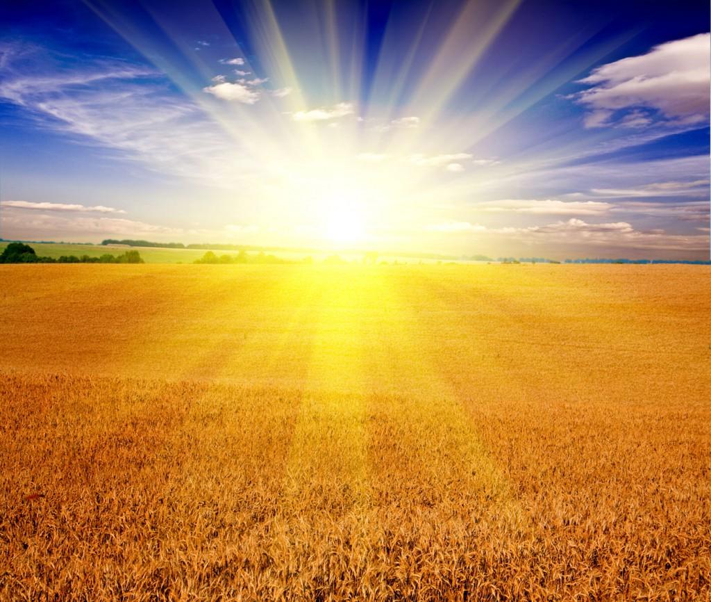 Energía Solar en granada - efiteks - soluciones eficientes